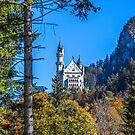 Germany. Bavaria. Neuschwanstein Castle. Autumn. by vadim19