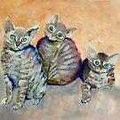 Devon Rex Kittens by Julie Ann Accornero