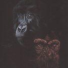 Chimpanzies by Robert David Gellion