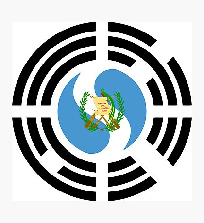 Korean Guatemalan Multinational Patriot Flag Series Photographic Print