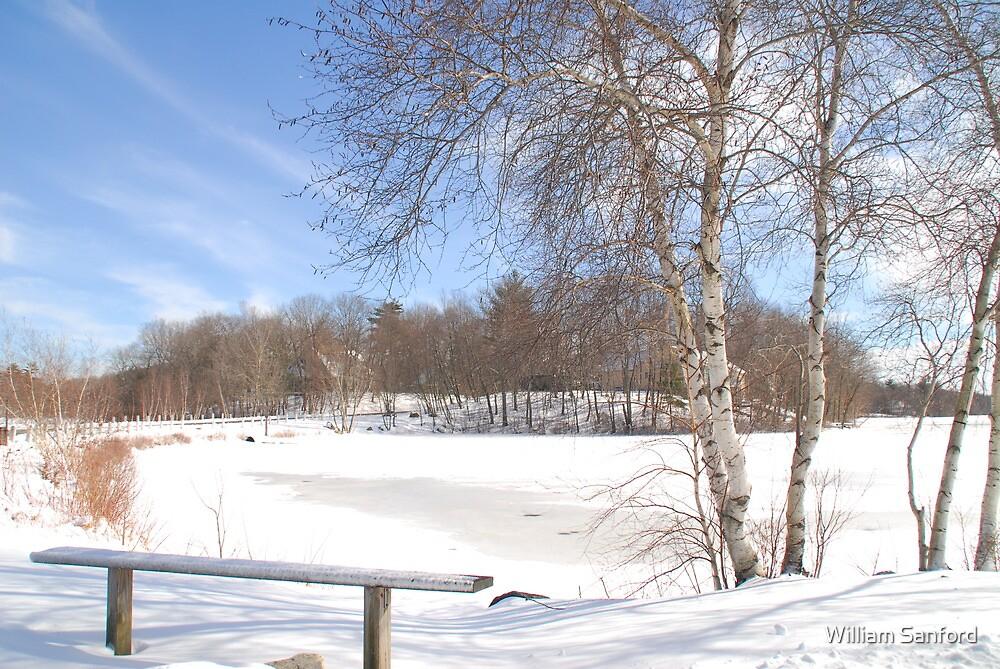 Winter Seating by William Sanford