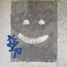 Smiley Wall by insizlane