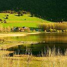 Antilhue.......Lugar de la X Región de Chile by cieloverde