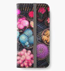 Cactus rainbow iPhone Wallet/Case/Skin