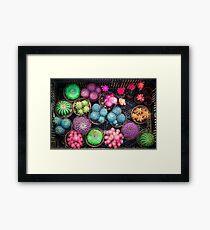 Cactus rainbow Framed Art Print