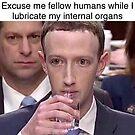 Mark Zuckerberg Reptile Meme by KiyomiShop