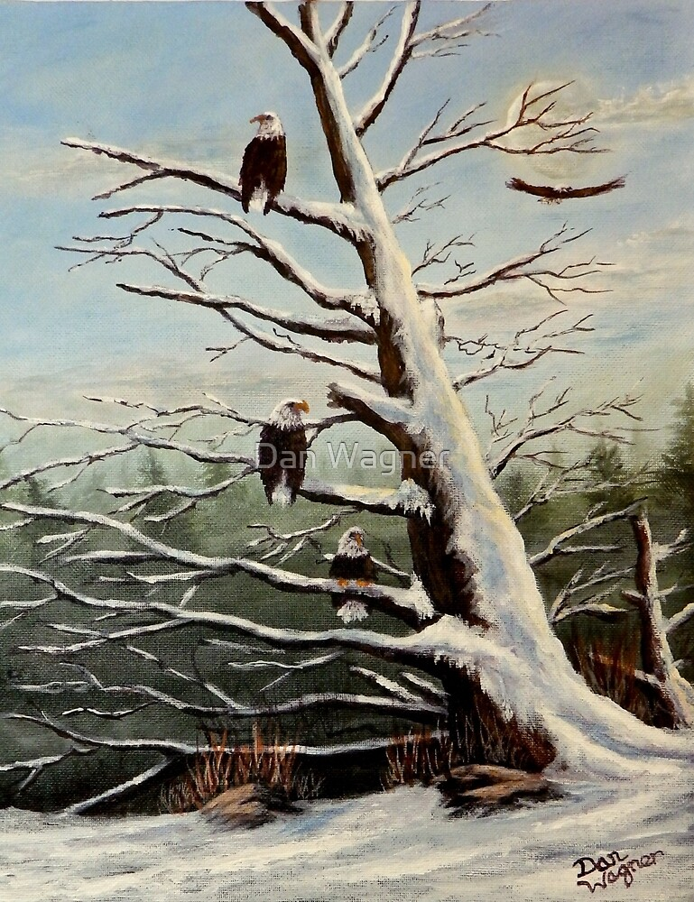 Home to Roost by Dan Wagner