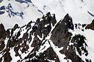 Governors Ridge by Tori Snow