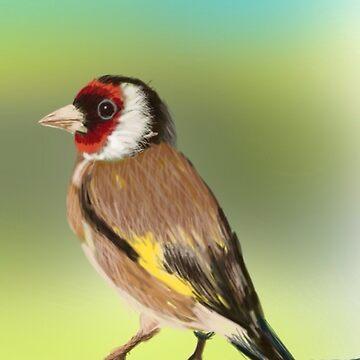 Golden Finch by Ian Shiel  by Ruckrova