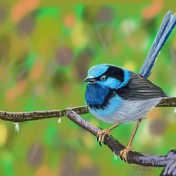 Blue Wren  by Ruckrova