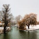 Winter River by RayDevlin