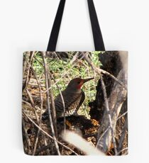 Northern Flicker (Red-shafted) ~ Male Tote Bag