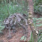 Skeleton and bracket fungi. by LillyDigi