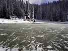 Frozen Lake Tipsoo by Tori Snow