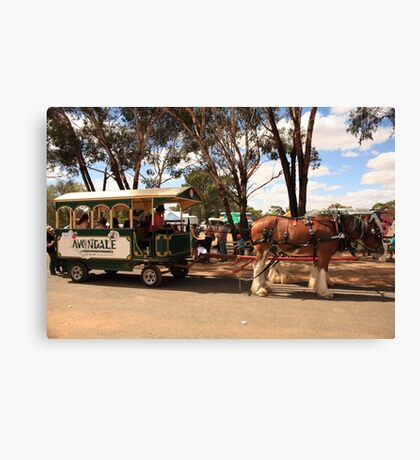Clydesdales #2 Canvas Print