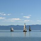 Sailboats in blue by Jola Martysz