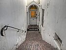 Front door by awefaul