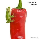 Frog on a Pepper by Alex  Bramwell