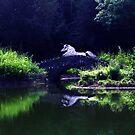 Moonlight Dreams by Dawn B Davies-McIninch