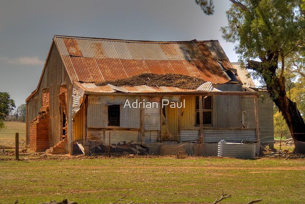 Pioneer Homestead, near Young, NSW, Australia by Adrian Paul