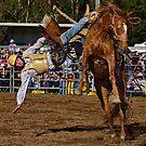 Horse 1 Rider 0 by Ian English