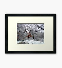 A Snow Scene Framed Print