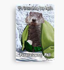 It's Groundhog Day Again Metal Print