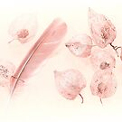 Gooseberries, a feather with a touch of pink by John Holding