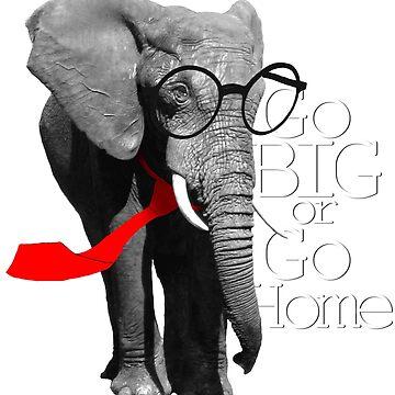Cool Elephant by thesamba
