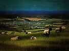 South Downs View by Dorothy Berry-Lound