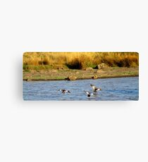 You're Clear For Landing Canvas Print