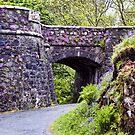 Dunvegan Castle Wall by Lynne Morris