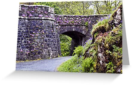 Dunvegan Castle Wall by Lynne Morris