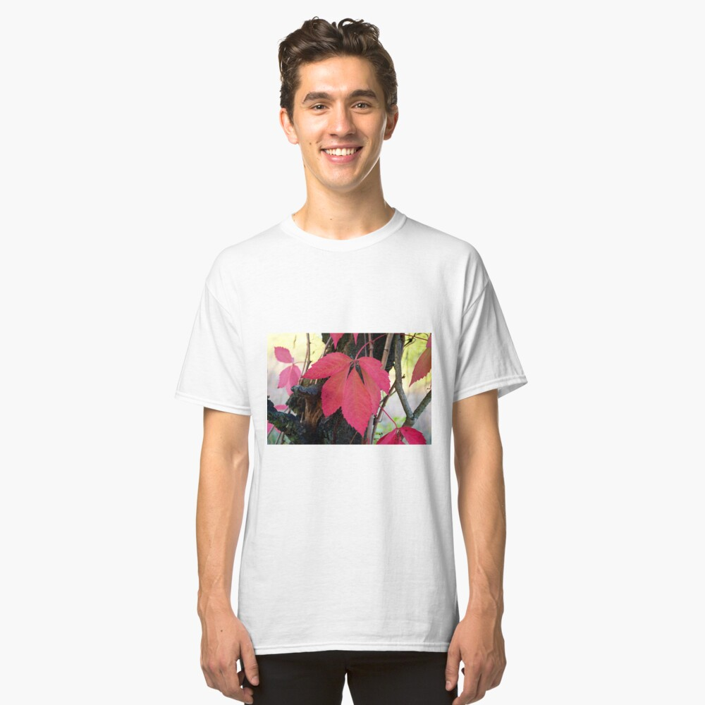 Vines with red leaf Classic T-Shirt