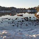 A walk to the fjord by Annbjørg  Næss