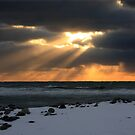 Sun, sun, shining on the weater by Debbie  Roberts