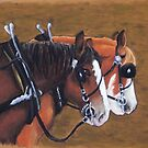 Clydesdale pair by MelanieRose