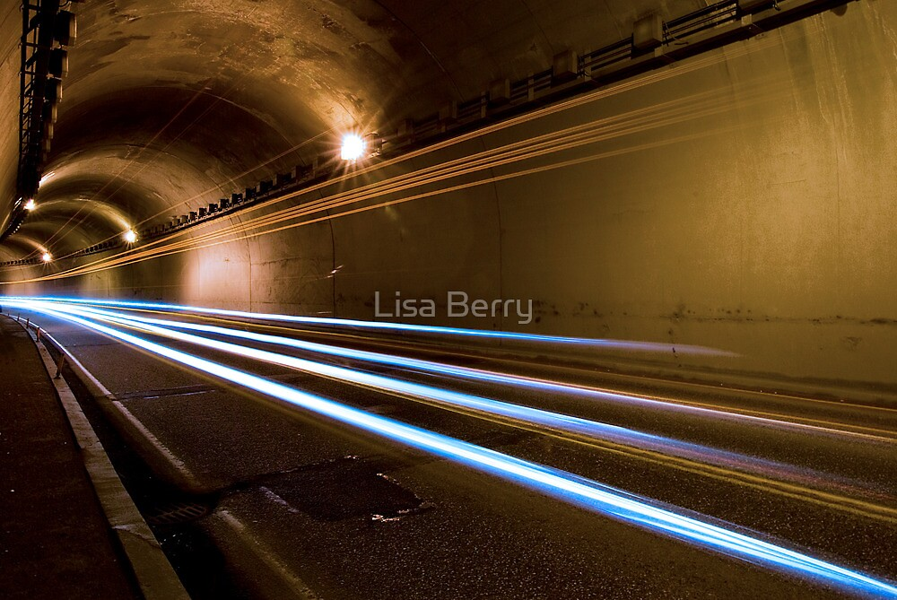 Flying Through Time by Lisa Berry
