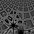 Monochrome Mandelbrot  2018-12-29-034 by Rupert Russell