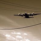 Flight Path by JadeHarmony