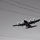 Flight Path 2 by JadeHarmony