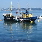 Brixham Outer Harbour by lezvee