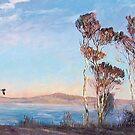 Swan Point Plover by Pieter Zaadstra
