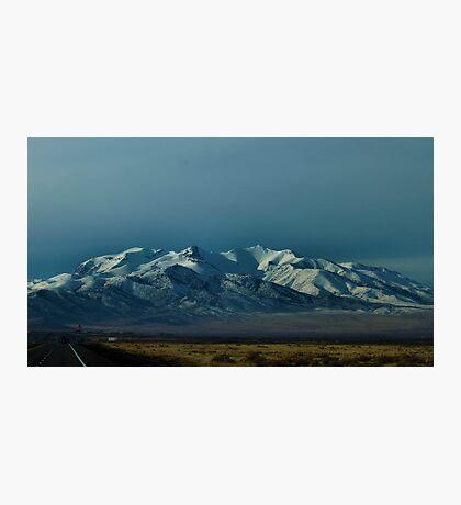 Puckerbrush, Nevada Photographic Print