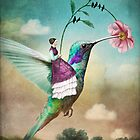 The Hummingbird (6 of wands) von Catrin Welz-Stein