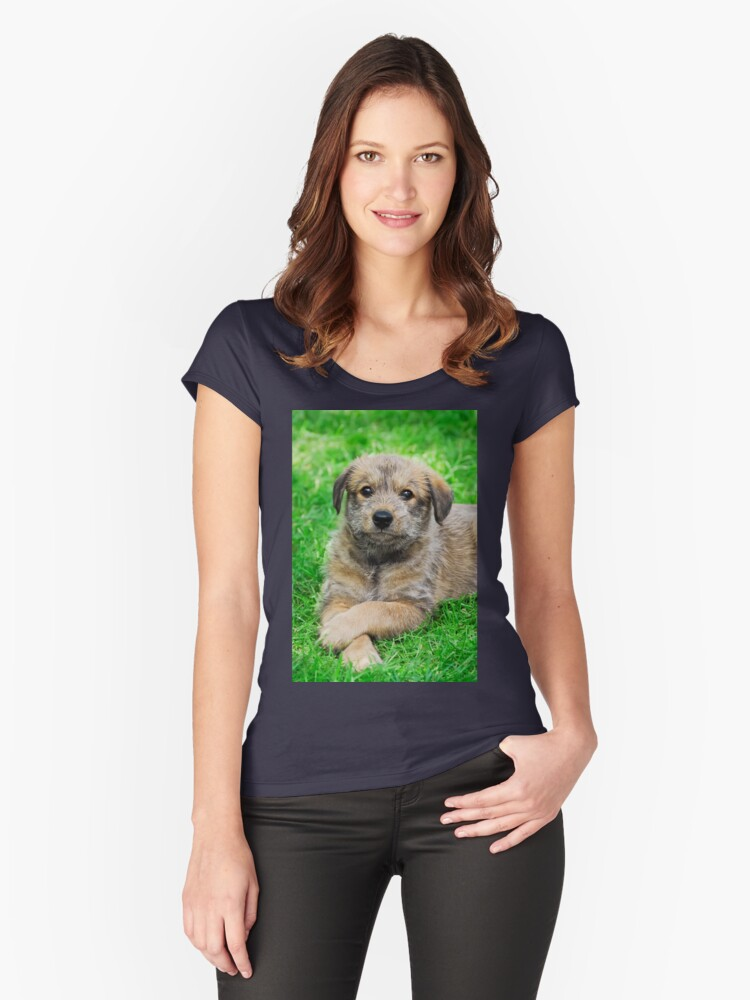 Cool-Puppy, Berger Picard  Women's Fitted Scoop T-Shirt Front