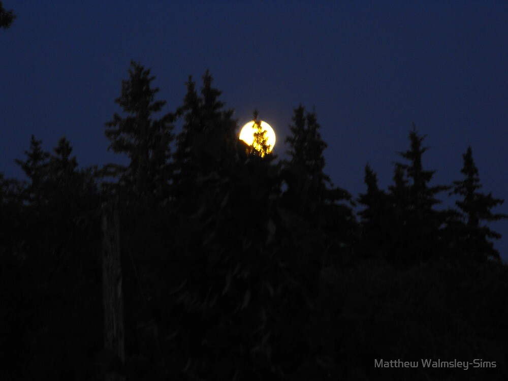 Full moon in Canada by Matthew Walmsley-Sims