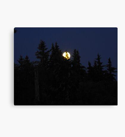 Full moon in Canada Canvas Print