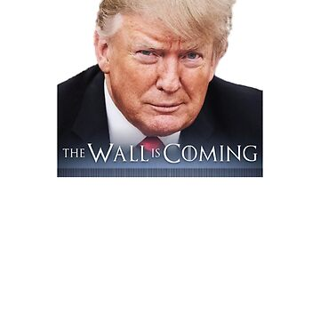 President Trump - The Wall is Coming by EfrainGaleano