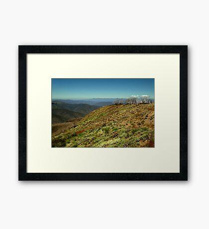Vivad Geen, Mt Blue Rag Framed Print